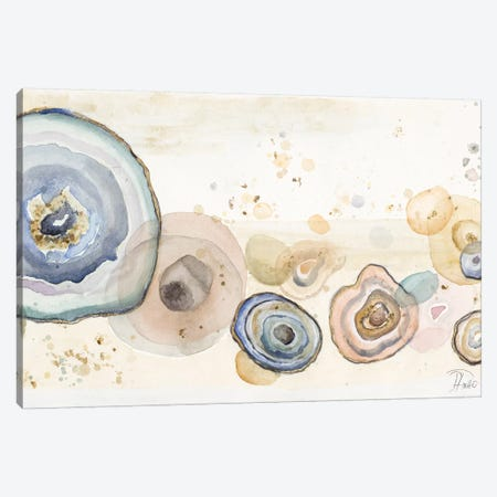 Agates Flying Watercolor Canvas Print #PPI12} by Patricia Pinto Canvas Art