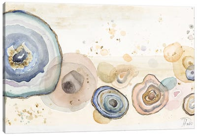 Agates Flying Watercolor Canvas Art Print