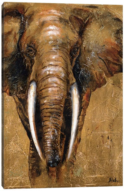 Gold Elephant Canvas Art Print