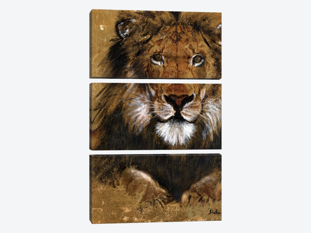 Gold Lion by Patricia Pinto 3-piece Canvas Print