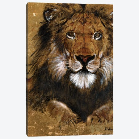 Gold Lion Canvas Print #PPI150} by Patricia Pinto Canvas Wall Art