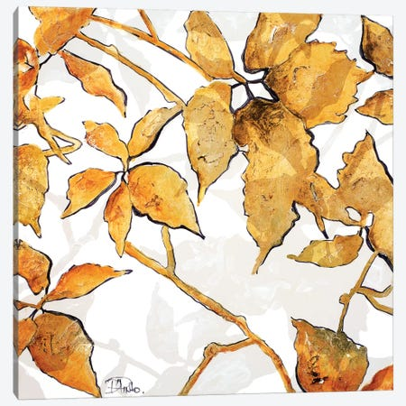 Gold Shadows I Canvas Print #PPI153} by Patricia Pinto Canvas Art