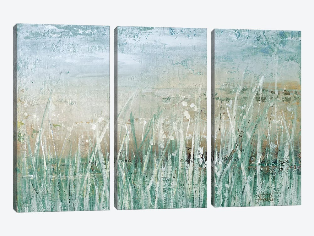 Grass Memories by Patricia Pinto 3-piece Canvas Print