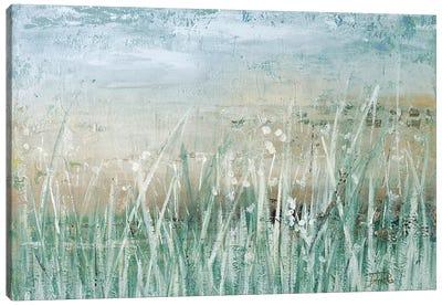Grass Memories Canvas Art Print