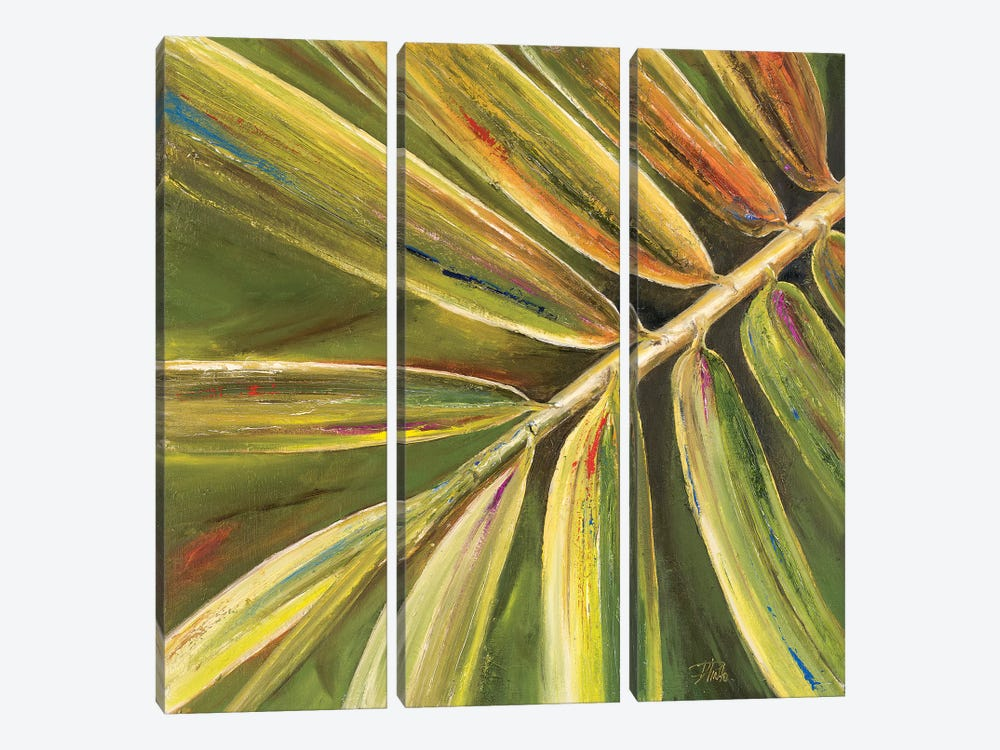 Green Close Up II by Patricia Pinto 3-piece Canvas Art