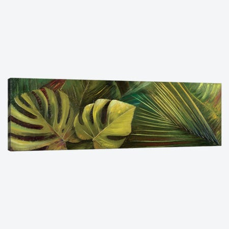 Green for Ever I Canvas Print #PPI163} by Patricia Pinto Art Print