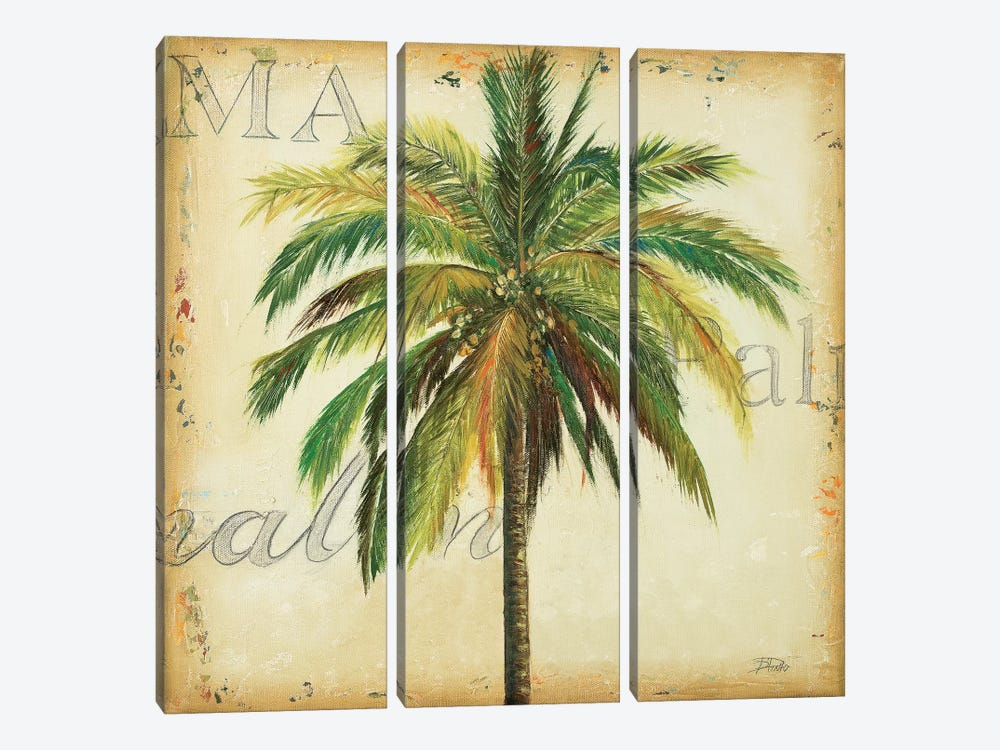 La Palma I by Patricia Pinto 3-piece Canvas Print