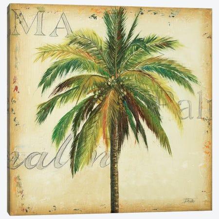 La Palma I Canvas Print #PPI176} by Patricia Pinto Art Print
