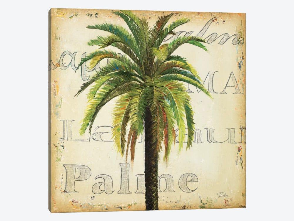La Palma III by Patricia Pinto 1-piece Canvas Art