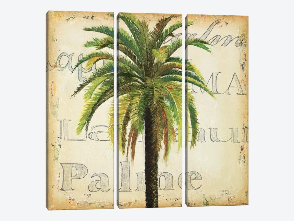 La Palma III by Patricia Pinto 3-piece Canvas Artwork