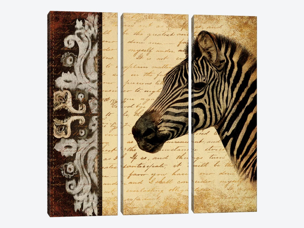 Madagascar Safari II by Patricia Pinto 3-piece Canvas Art Print