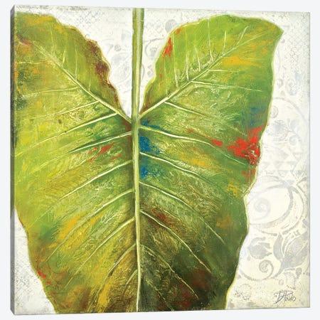 Mafafa I Canvas Print #PPI192} by Patricia Pinto Canvas Wall Art
