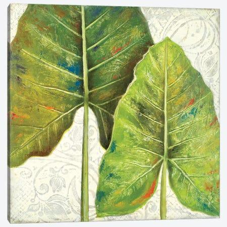 Mafafa II Canvas Print #PPI193} by Patricia Pinto Canvas Artwork