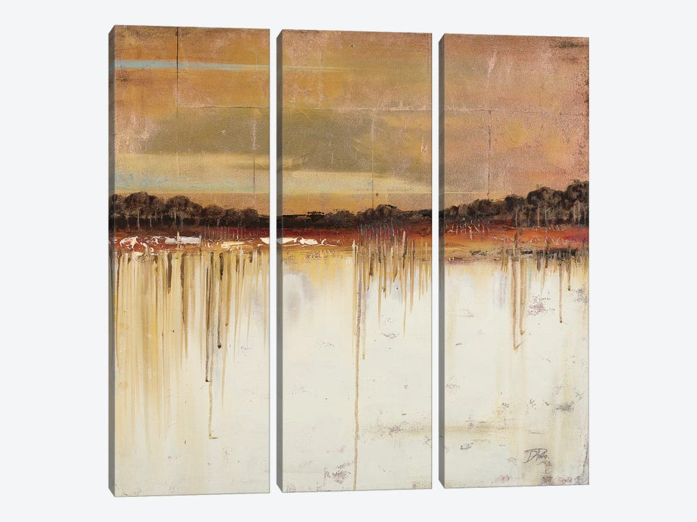 Melting Gold by Patricia Pinto 3-piece Canvas Artwork