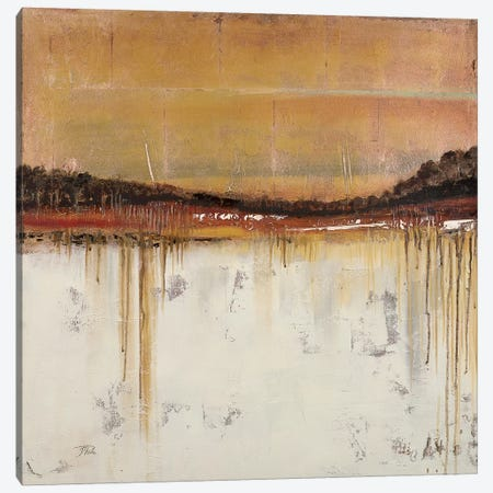 Melting Gold II 3-Piece Canvas #PPI196} by Patricia Pinto Canvas Art Print