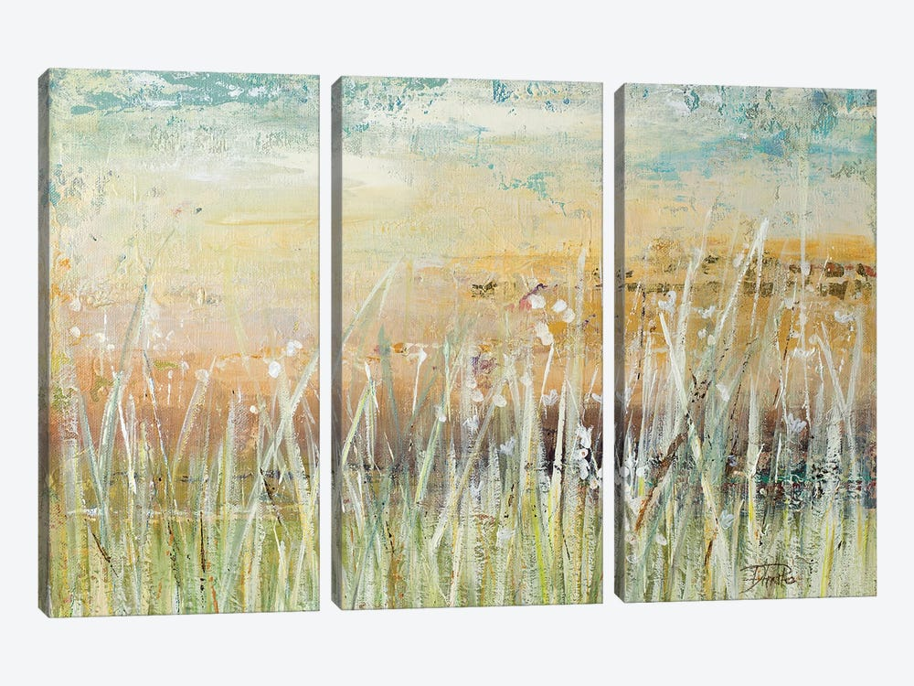Muted Grass by Patricia Pinto 3-piece Canvas Print