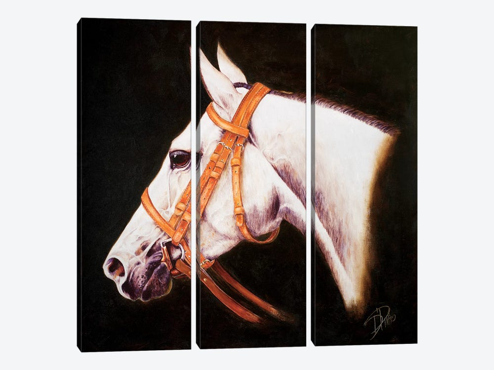 My Horse by Patricia Pinto 3-piece Canvas Wall Art