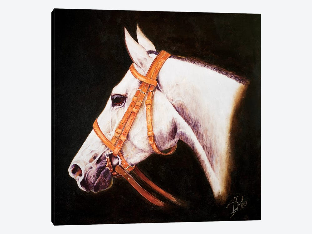 My Horse by Patricia Pinto 1-piece Canvas Artwork