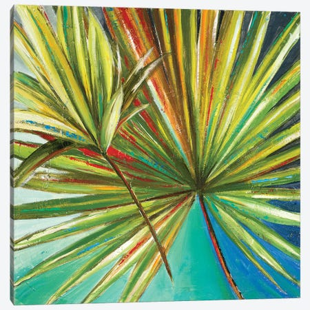 New Palmera I Canvas Print #PPI210} by Patricia Pinto Art Print