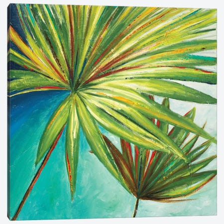 New Palmera II Canvas Print #PPI211} by Patricia Pinto Canvas Print