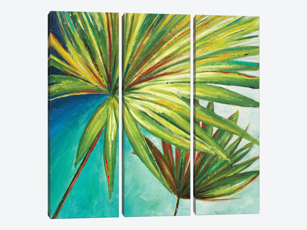 New Palmera II by Patricia Pinto 3-piece Canvas Artwork