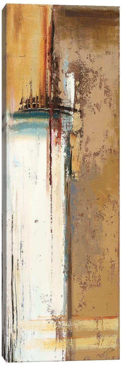 Oxido II Canvas Art Print