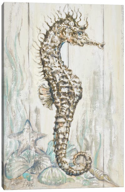 Antique Seahorse I Canvas Art Print