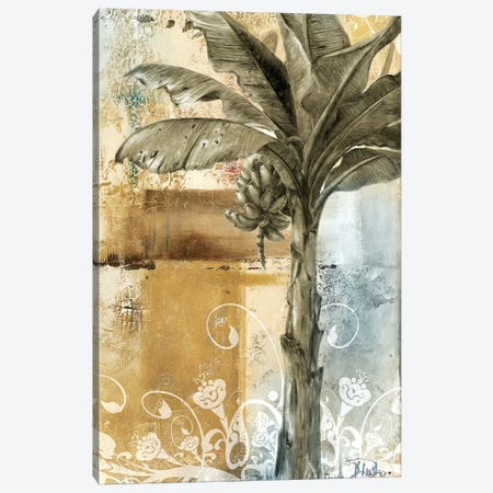Palm & Ornament II Canvas Print #PPI221} by Patricia Pinto Canvas Artwork
