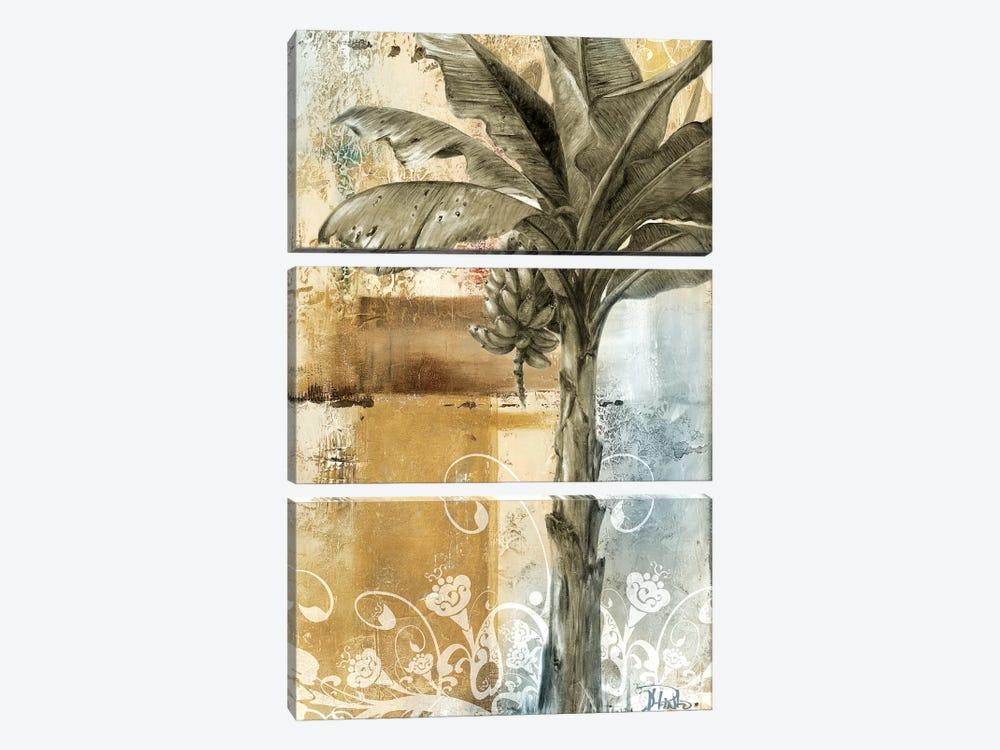 Palm & Ornament II by Patricia Pinto 3-piece Art Print