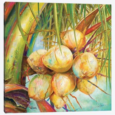 Patricia's Coconuts I Canvas Print #PPI226} by Patricia Pinto Canvas Art Print