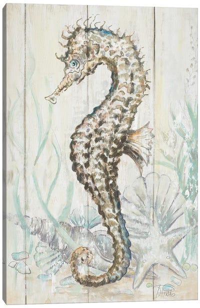 Antique Seahorse II Canvas Art Print