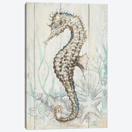 Antique Seahorse II Canvas Print #PPI22} by Patricia Pinto Canvas Art Print