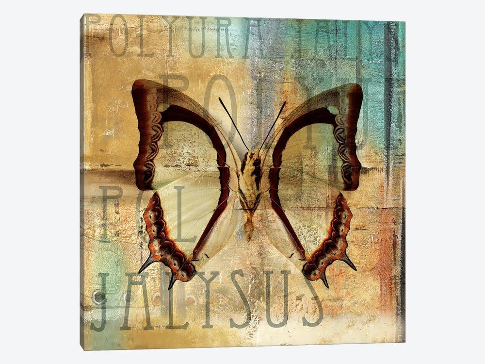 Polyurabutterfly II by Patricia Pinto 1-piece Art Print