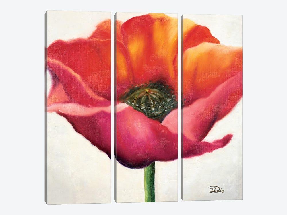 Poppy Flower I by Patricia Pinto 3-piece Canvas Art