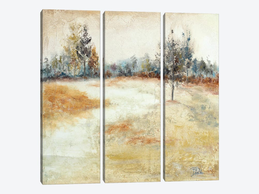 Quiet Forest I by Patricia Pinto 3-piece Canvas Artwork