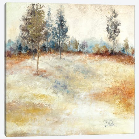 Quiet Forest II 3-Piece Canvas #PPI245} by Patricia Pinto Art Print