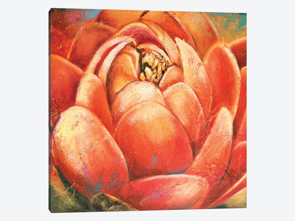 Red Lotus II by Patricia Pinto 1-piece Canvas Print