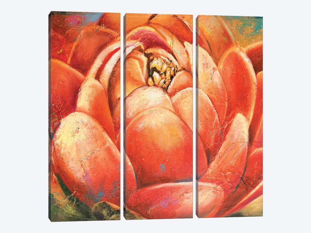 Red Lotus II by Patricia Pinto 3-piece Canvas Art Print