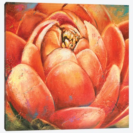 Red Lotus II 3-Piece Canvas #PPI254} by Patricia Pinto Canvas Artwork