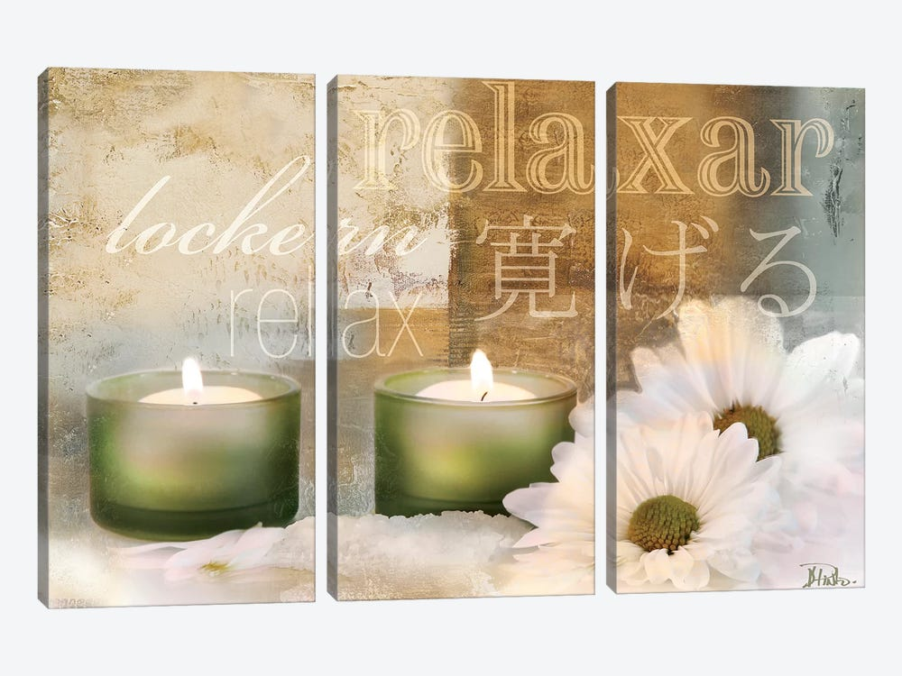 Relaxation I by Patricia Pinto 3-piece Canvas Art