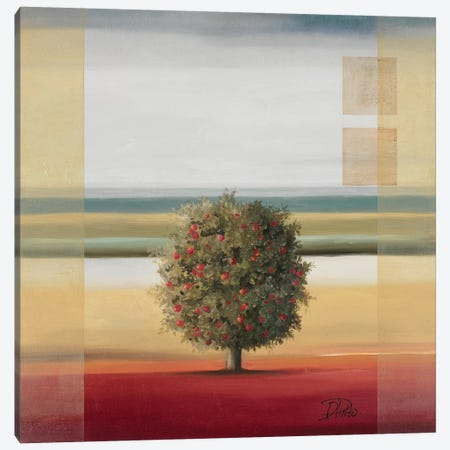 Apple Tree I Canvas Print #PPI25} by Patricia Pinto Canvas Wall Art