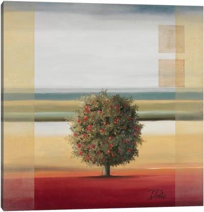 Apple Tree I Canvas Art Print