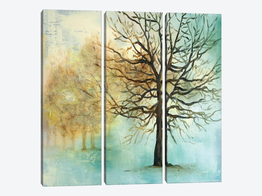 Serene Forest I by Patricia Pinto 3-piece Art Print