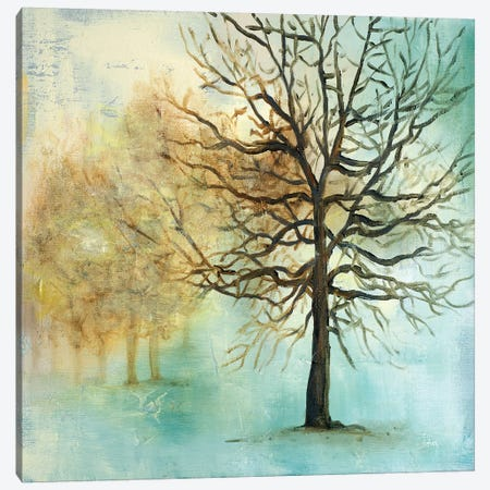 Serene Forest I 3-Piece Canvas #PPI267} by Patricia Pinto Art Print