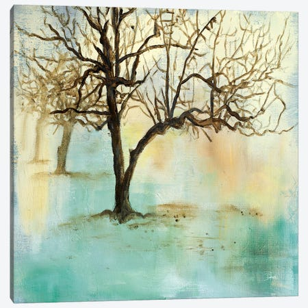 Serene Forest II Canvas Print #PPI268} by Patricia Pinto Canvas Wall Art