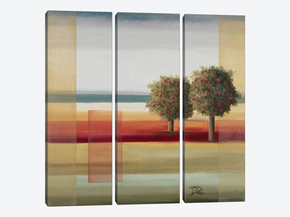 Apple Tree II by Patricia Pinto 3-piece Canvas Wall Art