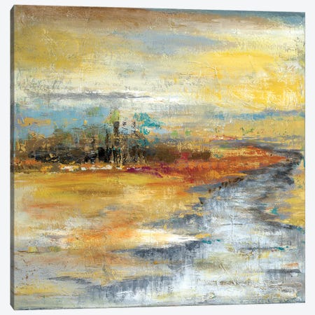 Silver River I Canvas Print #PPI273} by Patricia Pinto Canvas Print