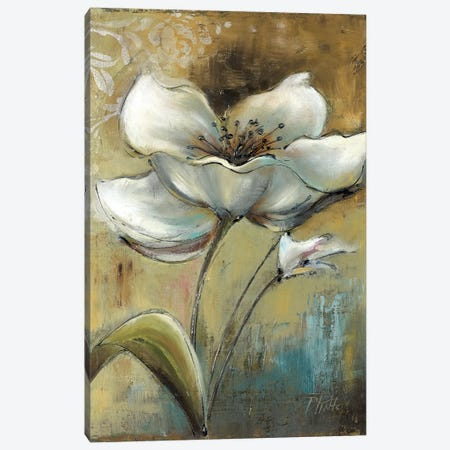 Spring I Canvas Print #PPI278} by Patricia Pinto Canvas Print