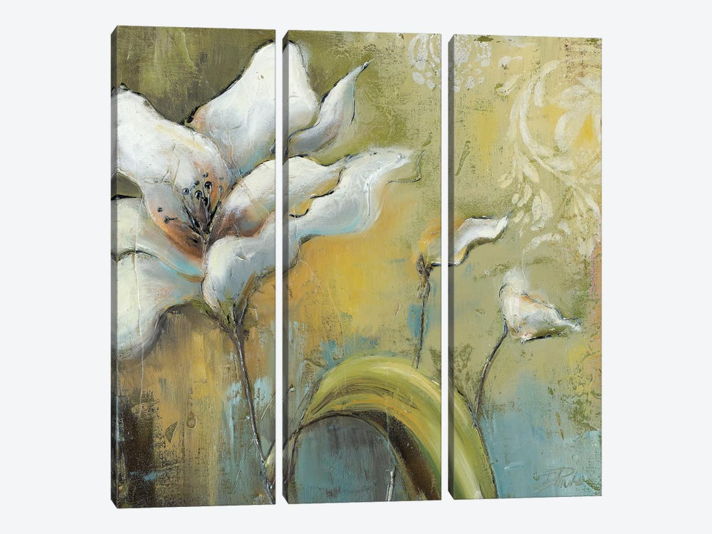 Spring II by Patricia Pinto 3-piece Canvas Art
