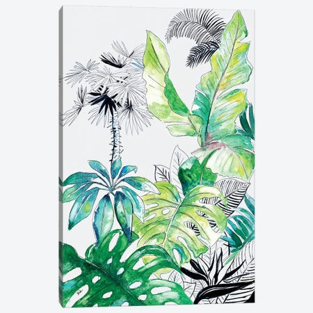 Teal Palm Selva I Canvas Print #PPI296} by Patricia Pinto Canvas Wall Art